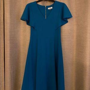 Blue Calvin Klein dress.